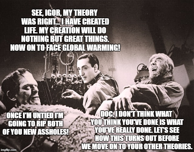 The inventor of Chemtrails in his early career as a theoretical scientist... | SEE, IGOR, MY THEORY WAS RIGHT... I HAVE CREATED LIFE. MY CREATION WILL DO NOTHING BUT GREAT THINGS. NOW ON TO FACE GLOBAL WARMING! DOC, I D | image tagged in memes,global warming,mad scientist,chemtrails,conspiracy theories,save the earth | made w/ Imgflip meme maker
