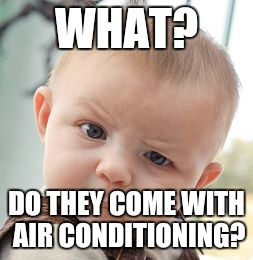Skeptical Baby Meme | WHAT? DO THEY COME WITH AIR CONDITIONING? | image tagged in memes,skeptical baby | made w/ Imgflip meme maker