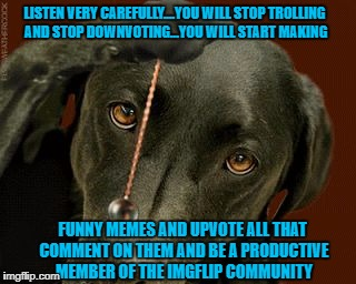 I figured it was worth a shot!!!  LOL | LISTEN VERY CAREFULLY....YOU WILL STOP TROLLING AND STOP DOWNVOTING...YOU WILL START MAKING FUNNY MEMES AND UPVOTE ALL THAT COMMENT ON THEM  | image tagged in dog hypnotize,memes,trolling,dogs,funny,animals | made w/ Imgflip meme maker