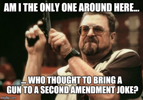 Am I The Only One Around Here Meme | AM I THE ONLY ONE AROUND HERE... ... WHO THOUGHT TO BRING A GUN TO A SECOND AMENDMENT JOKE? | image tagged in memes,am i the only one around here | made w/ Imgflip meme maker
