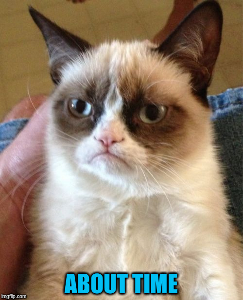 Grumpy Cat Meme | ABOUT TIME | image tagged in memes,grumpy cat | made w/ Imgflip meme maker