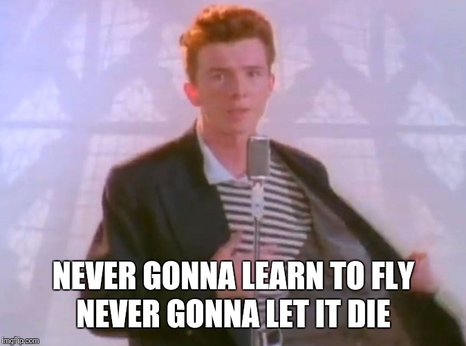 NEVER GONNA LEARN TO FLY NEVER GONNA LET IT DIE | made w/ Imgflip meme maker
