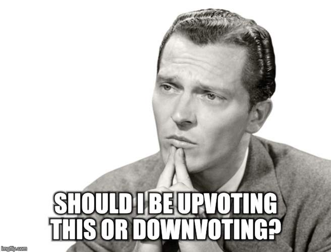 SHOULD I BE UPVOTING THIS OR DOWNVOTING? | made w/ Imgflip meme maker
