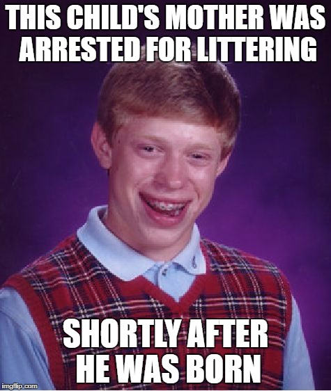 Roasted! Brian=Trash, so his mom was littering. | THIS CHILD'S MOTHER WAS ARRESTED FOR LITTERING SHORTLY AFTER HE WAS BORN | image tagged in memes,bad luck brian,funny,roast | made w/ Imgflip meme maker