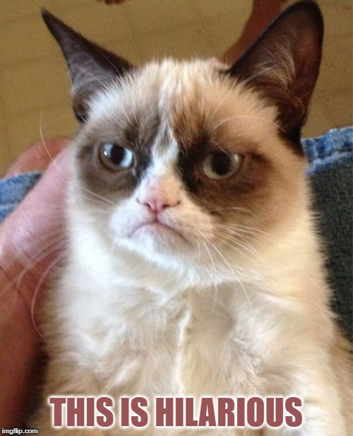 Grumpy Cat Meme | THIS IS HILARIOUS | image tagged in memes,grumpy cat | made w/ Imgflip meme maker