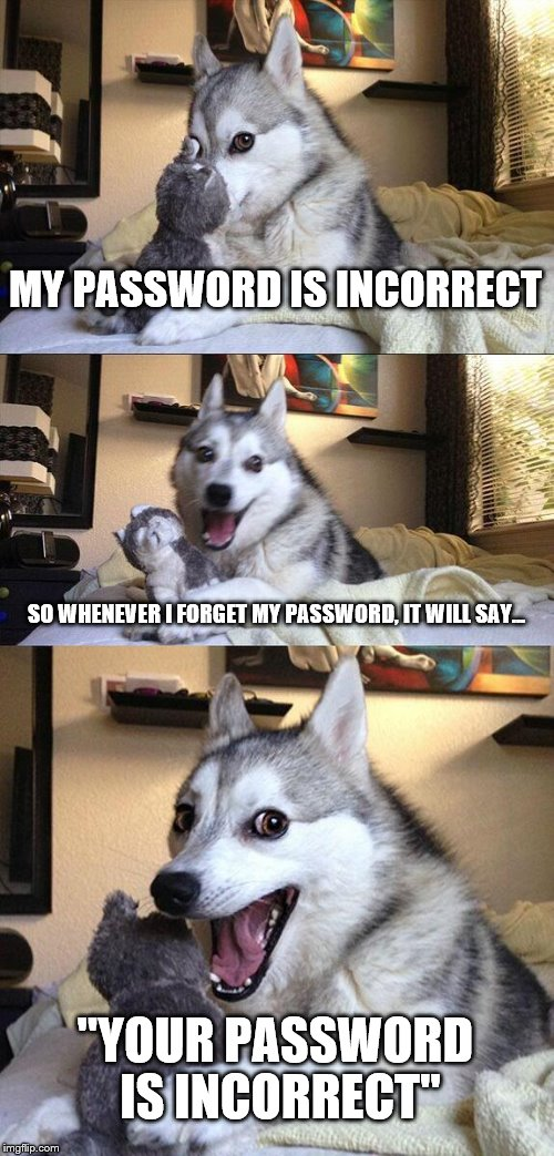 "Bad Pun Dog Meme | MY PASSWORD IS INCORRECT SO WHENEVER I FORGET MY PASSWORD, IT WILL SAY... ""YOUR PASSWORD IS INCORRECT"" 