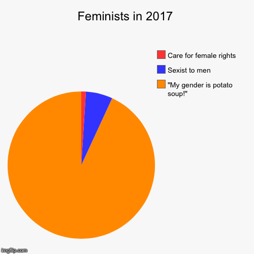 "100% accurate  | Feminists in 2017 | ""My gender is potato soup!"", Sexist to men, Care for female rights 