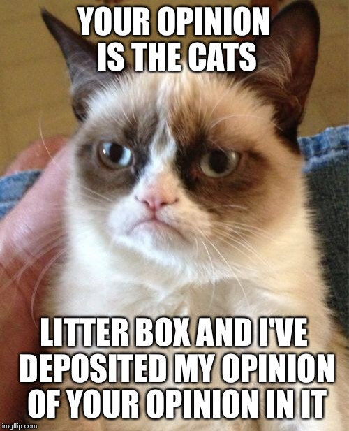 Grumpy Cat Meme | YOUR OPINION IS THE CATS LITTER BOX AND I'VE DEPOSITED MY OPINION OF YOUR OPINION IN IT | image tagged in memes,grumpy cat | made w/ Imgflip meme maker