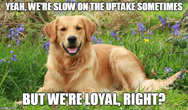 YEAH, WE'RE SLOW ON THE UPTAKE SOMETIMES BUT WE'RE LOYAL, RIGHT? | made w/ Imgflip meme maker