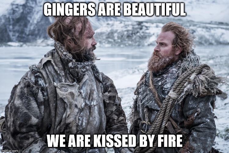 GINGERS ARE BEAUTIFUL WE ARE KISSED BY FIRE | image tagged in tormund | made w/ Imgflip meme maker