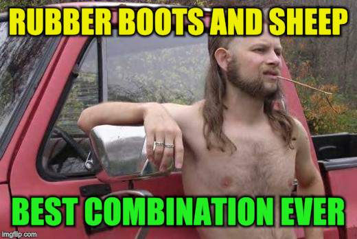 RUBBER BOOTS AND SHEEP BEST COMBINATION EVER | made w/ Imgflip meme maker