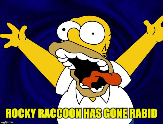 ROCKY RACCOON HAS GONE RABID | made w/ Imgflip meme maker