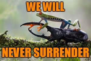 WE WILL NEVER SURRENDER | made w/ Imgflip meme maker