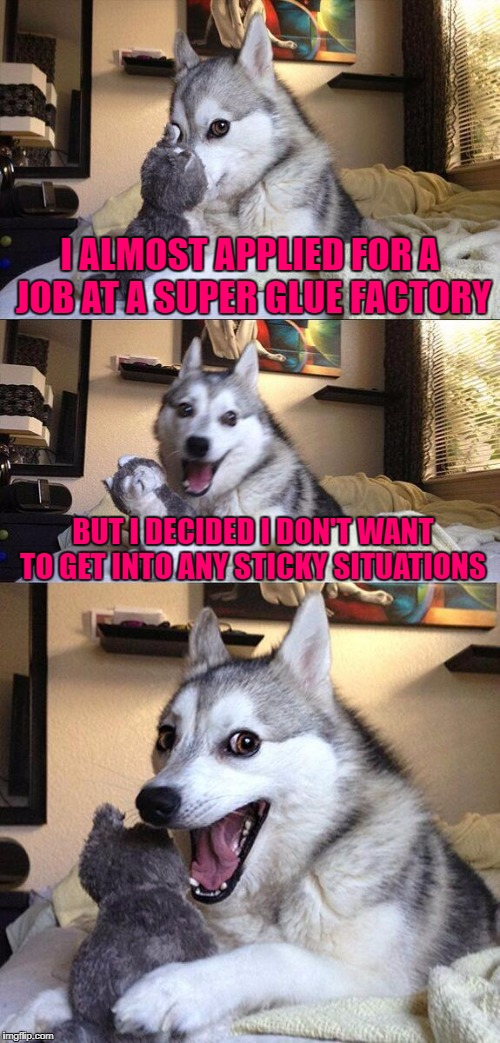 I Couldn't Stand The Stickiness!  | I ALMOST APPLIED FOR A JOB AT A SUPER GLUE FACTORY BUT I DECIDED I DON'T WANT TO GET INTO ANY STICKY SITUATIONS | image tagged in memes,bad pun dog,socrates,socrates meme,super glue,sticky situation | made w/ Imgflip meme maker