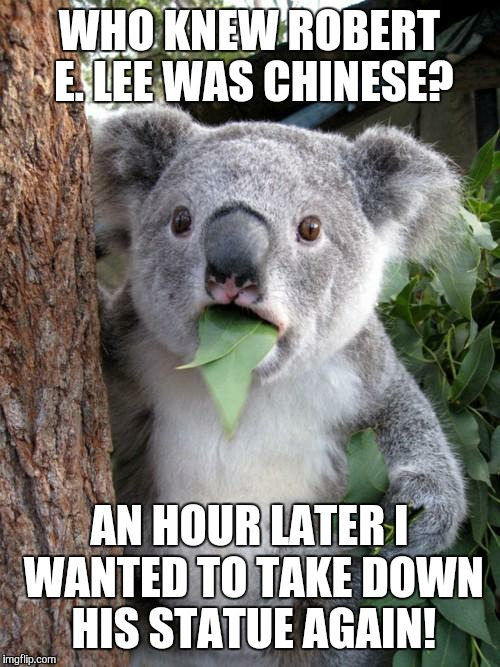 Surprised Koala Meme | WHO KNEW ROBERT E. LEE WAS CHINESE? AN HOUR LATER I WANTED TO TAKE DOWN HIS STATUE AGAIN! | image tagged in memes,surprised koala | made w/ Imgflip meme maker