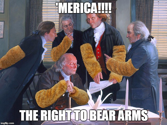 right to bear arms | 'MERICA!!!! THE RIGHT TO BEAR ARMS | image tagged in right to bear arms | made w/ Imgflip meme maker