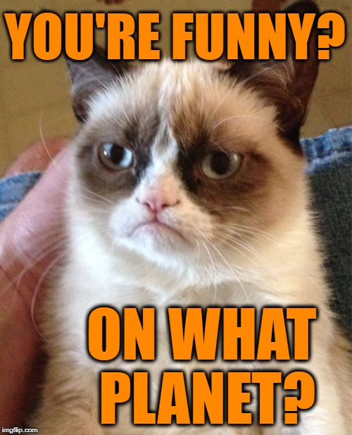 Grumpy Cat Meme | YOU'RE FUNNY? ON WHAT PLANET? | image tagged in memes,grumpy cat | made w/ Imgflip meme maker