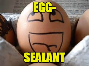 EGG- SEALANT | made w/ Imgflip meme maker
