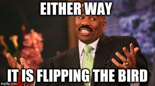 Steve Harvey Meme | EITHER WAY IT IS FLIPPING THE BIRD | image tagged in memes,steve harvey | made w/ Imgflip meme maker