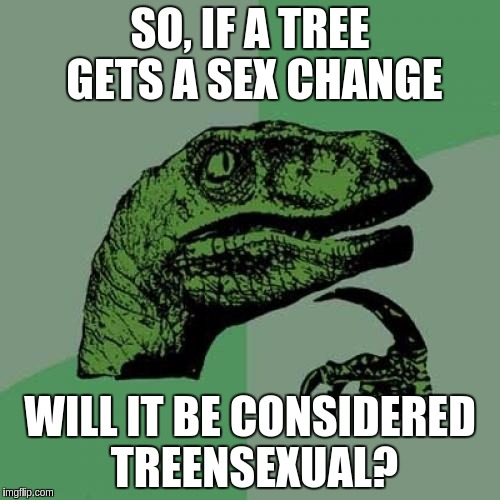 Philosoraptor Meme | SO, IF A TREE GETS A SEX CHANGE WILL IT BE CONSIDERED TREENSEXUAL? | image tagged in memes,philosoraptor,transgender | made w/ Imgflip meme maker