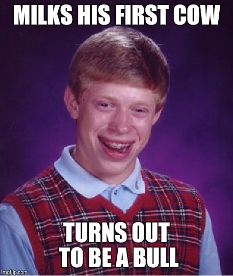 For anyone who missed Kingpin | MILKS HIS FIRST COW TURNS OUT TO BE A BULL | image tagged in memes,bad luck brian | made w/ Imgflip meme maker