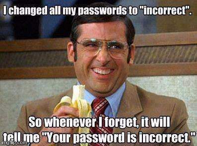 I should do this... | image tagged in old memes,incorrect password | made w/ Imgflip meme maker