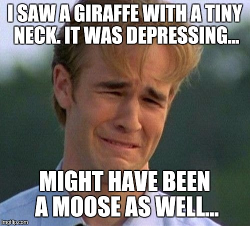 Kinda a sad story....ish... | I SAW A GIRAFFE WITH A TINY NECK. IT WAS DEPRESSING... MIGHT HAVE BEEN A MOOSE AS WELL... | image tagged in memes,1990s first world problems | made w/ Imgflip meme maker