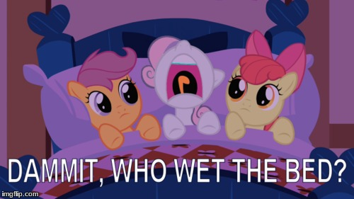 Who did it? | image tagged in memes,ponies,wet the bed | made w/ Imgflip meme maker