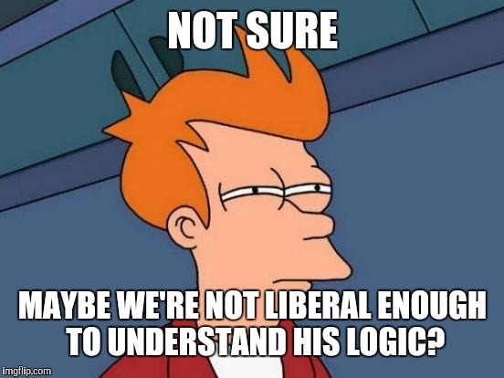 Futurama Fry Meme | NOT SURE MAYBE WE'RE NOT LIBERAL ENOUGH TO UNDERSTAND HIS LOGIC? | image tagged in memes,futurama fry | made w/ Imgflip meme maker