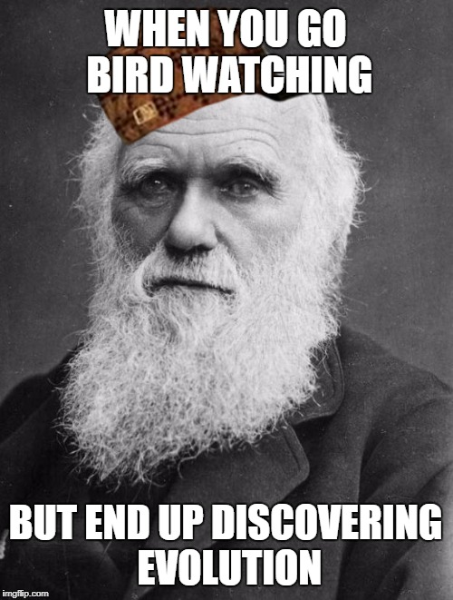 WHEN YOU GO BIRD WATCHING BUT END UP DISCOVERING EVOLUTION | image tagged in charles darwin,scumbag | made w/ Imgflip meme maker