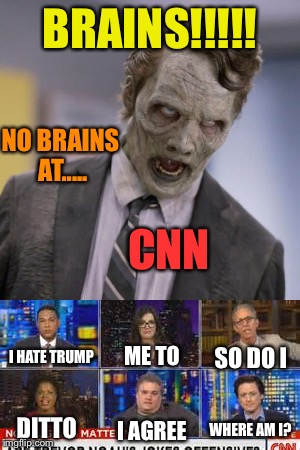 The hive mind that makes no honey :) | BRAINS!!!!! NO BRAINS AT..... I HATE TRUMP ME TO SO DO I DITTO I AGREE WHERE AM I? CNN | image tagged in memes | made w/ Imgflip meme maker