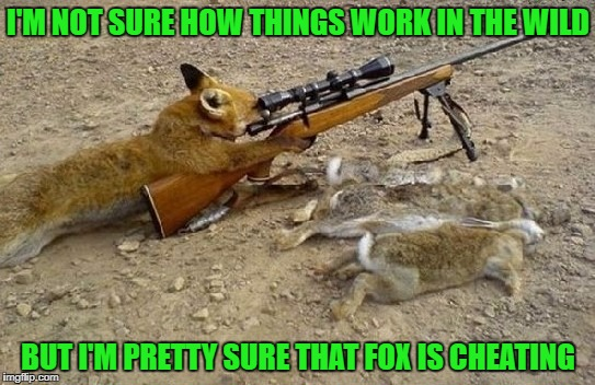I'm doing things the easy way!!! | I'M NOT SURE HOW THINGS WORK IN THE WILD BUT I'M PRETTY SURE THAT FOX IS CHEATING | image tagged in fox hunter,memes,animals,hunting,funny,technology | made w/ Imgflip meme maker