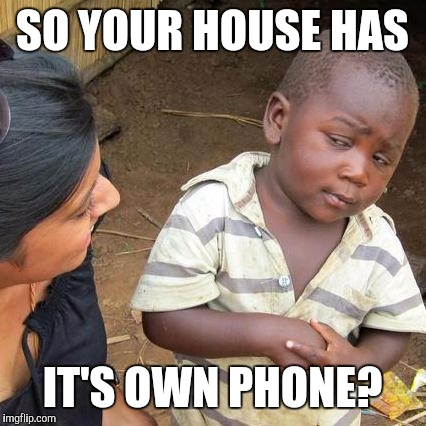 Third World Skeptical Kid Meme | SO YOUR HOUSE HAS IT'S OWN PHONE? | image tagged in memes,third world skeptical kid | made w/ Imgflip meme maker