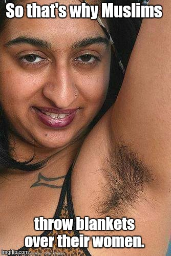 Squirrels in her armpits.  | So that's why Muslims throw blankets over their women. | image tagged in funny picture,hairy,armpits,blanket | made w/ Imgflip meme maker