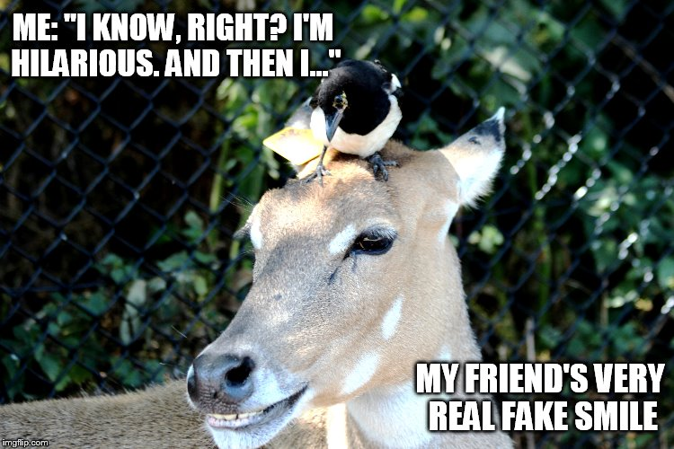 "Fake Smile if Ever! | ME: ""I KNOW, RIGHT? I'M HILARIOUS. AND THEN I..."" MY FRIEND'S VERY REAL FAKE SMILE 