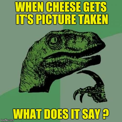 Philosoraptor Meme | WHEN CHEESE GETS IT'S PICTURE TAKEN WHAT DOES IT SAY ? | image tagged in memes,philosoraptor | made w/ Imgflip meme maker