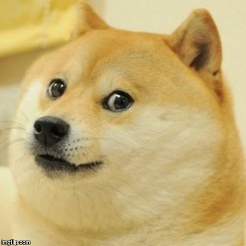 Doge Meme | NO | image tagged in memes,doge | made w/ Imgflip meme maker