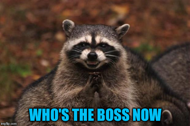 WHO'S THE BOSS NOW | made w/ Imgflip meme maker