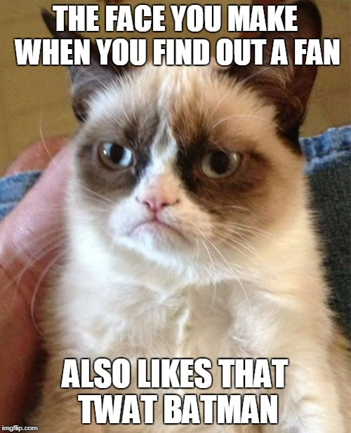 Grumpy Cat Meme | THE FACE YOU MAKE WHEN YOU FIND OUT A FAN ALSO LIKES THAT TWAT BATMAN | image tagged in memes,grumpy cat | made w/ Imgflip meme maker