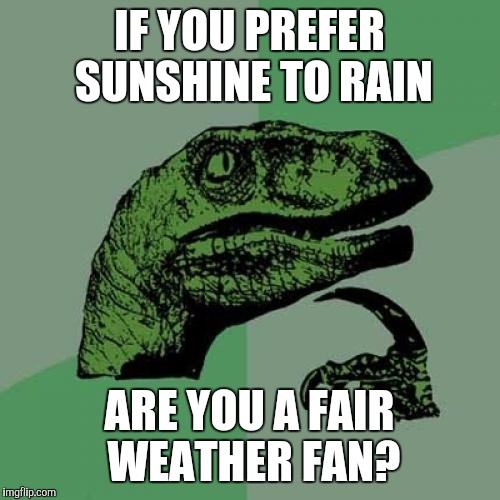 SUNSHIIIIIINE ON A RAPTORRRRR LOOKS SO LOVELYYY :D | IF YOU PREFER SUNSHINE TO RAIN ARE YOU A FAIR WEATHER FAN? | image tagged in funny,philosoraptor,humor,animals,memes,music | made w/ Imgflip meme maker
