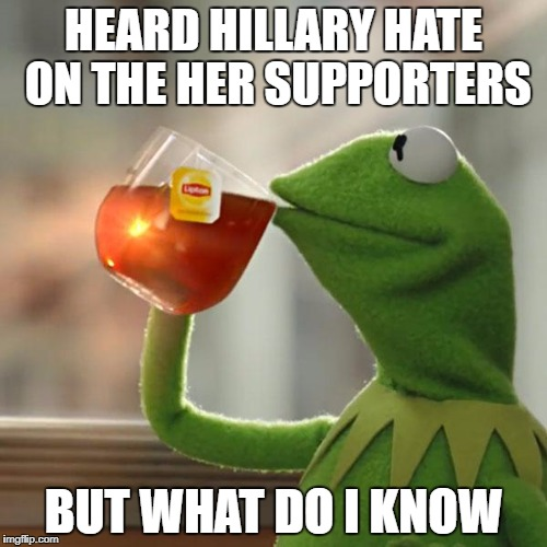 But Thats None Of My Business Meme | HEARD HILLARY HATE ON THE HER SUPPORTERS BUT WHAT DO I KNOW | image tagged in memes,but thats none of my business,kermit the frog | made w/ Imgflip meme maker