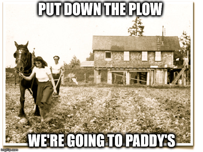 Put Down The Plow | PUT DOWN THE PLOW WE'RE GOING TO PADDY'S | image tagged in restaurants,portsmouth,cometopaddys,imthere | made w/ Imgflip meme maker