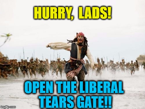 If all THAT water doesn't stop them,  nothing will!  lol | HURRY,  LADS! OPEN THE LIBERAL TEARS GATE!! | image tagged in pirates of the caribbean | made w/ Imgflip meme maker