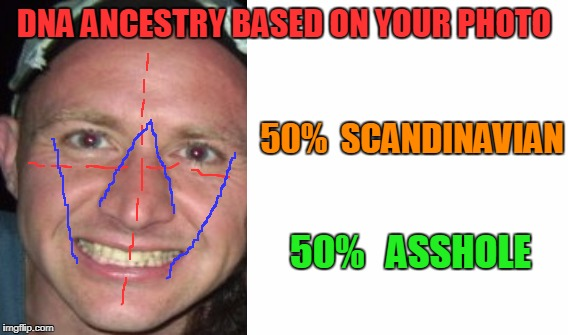 Nailed it! | DNA ANCESTRY BASED ON YOUR PHOTO 50%  SCANDINAVIAN 50%   ASSHOLE | image tagged in dna,facebook apps | made w/ Imgflip meme maker
