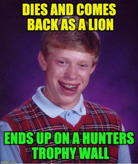 Bad Luck Brian Meme | DIES AND COMES BACK AS A LION ENDS UP ON A HUNTERS TROPHY WALL | image tagged in memes,bad luck brian | made w/ Imgflip meme maker
