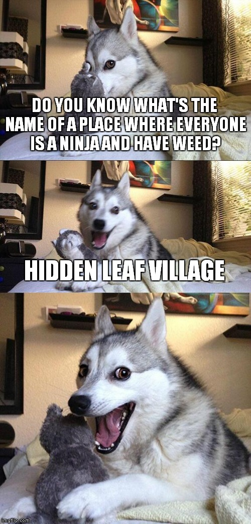 Naruto,Sasuke,Tsunade,Kakashi and others have a lot of explaining to do | DO YOU KNOW WHAT'S THE NAME OF A PLACE WHERE EVERYONE IS A NINJA AND HAVE WEED? HIDDEN LEAF VILLAGE | image tagged in memes,bad pun dog,funny,naruto,anime,weed | made w/ Imgflip meme maker