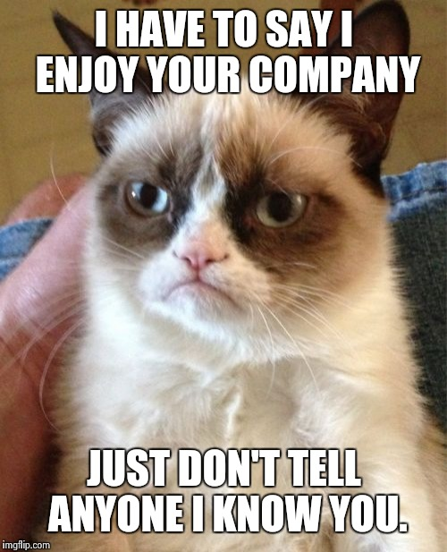 Grumpy Cat Meme | I HAVE TO SAY I ENJOY YOUR COMPANY JUST DON'T TELL ANYONE I KNOW YOU. | image tagged in memes,grumpy cat | made w/ Imgflip meme maker