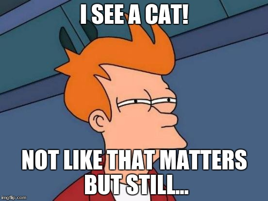 Futurama Fry Meme | I SEE A CAT! NOT LIKE THAT MATTERS BUT STILL... | image tagged in memes,futurama fry | made w/ Imgflip meme maker