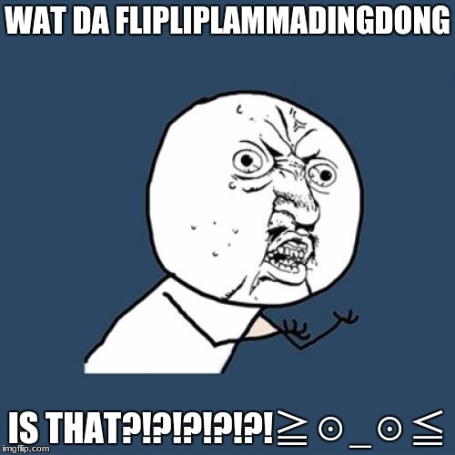Y U No Meme | WAT DA FLIPLIPLAMMADINGDONG IS THAT?!?!?!?!?!≧☉_☉≦ | image tagged in memes,y u no | made w/ Imgflip meme maker