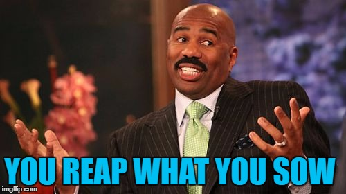 Steve Harvey Meme | YOU REAP WHAT YOU SOW | image tagged in memes,steve harvey | made w/ Imgflip meme maker